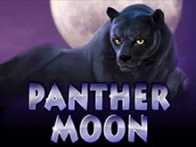 Panther Moon в игровом клубе Вулкан