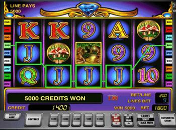 Multi magia игровые автоматы фото игровые автоматы в беларуси купить