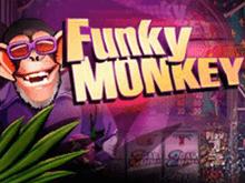 Трехбарабанный аппарат Funky Monkey для веселого досуга