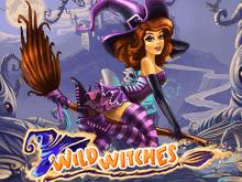 Игровой автомат для настоящих счастливчиков - Wild Witches